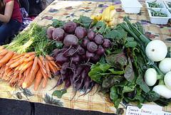 eco-farmers' market opens