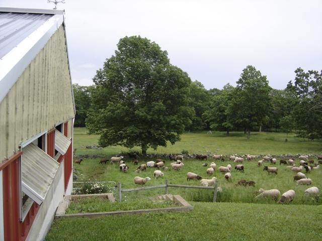 the pastoral outpost of door county