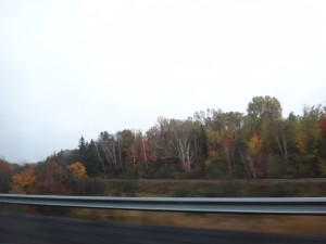 On the (Northeastern Ontario) Road