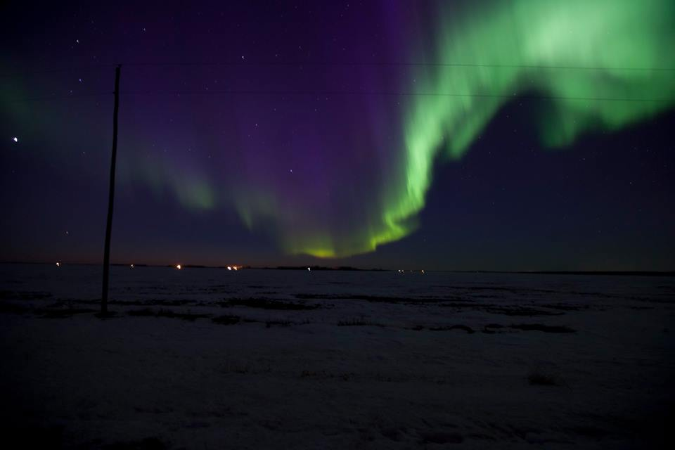 Northern Lights, March 2015. Photo by Kari Lacey