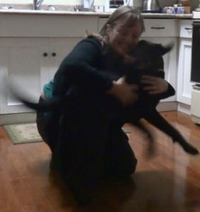 Happy dog greeting!