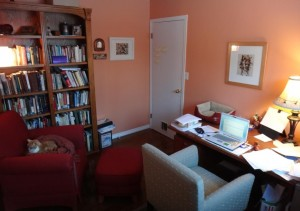 Walls are a bit more peach in this pic than the adobe colour they appear in natural light...